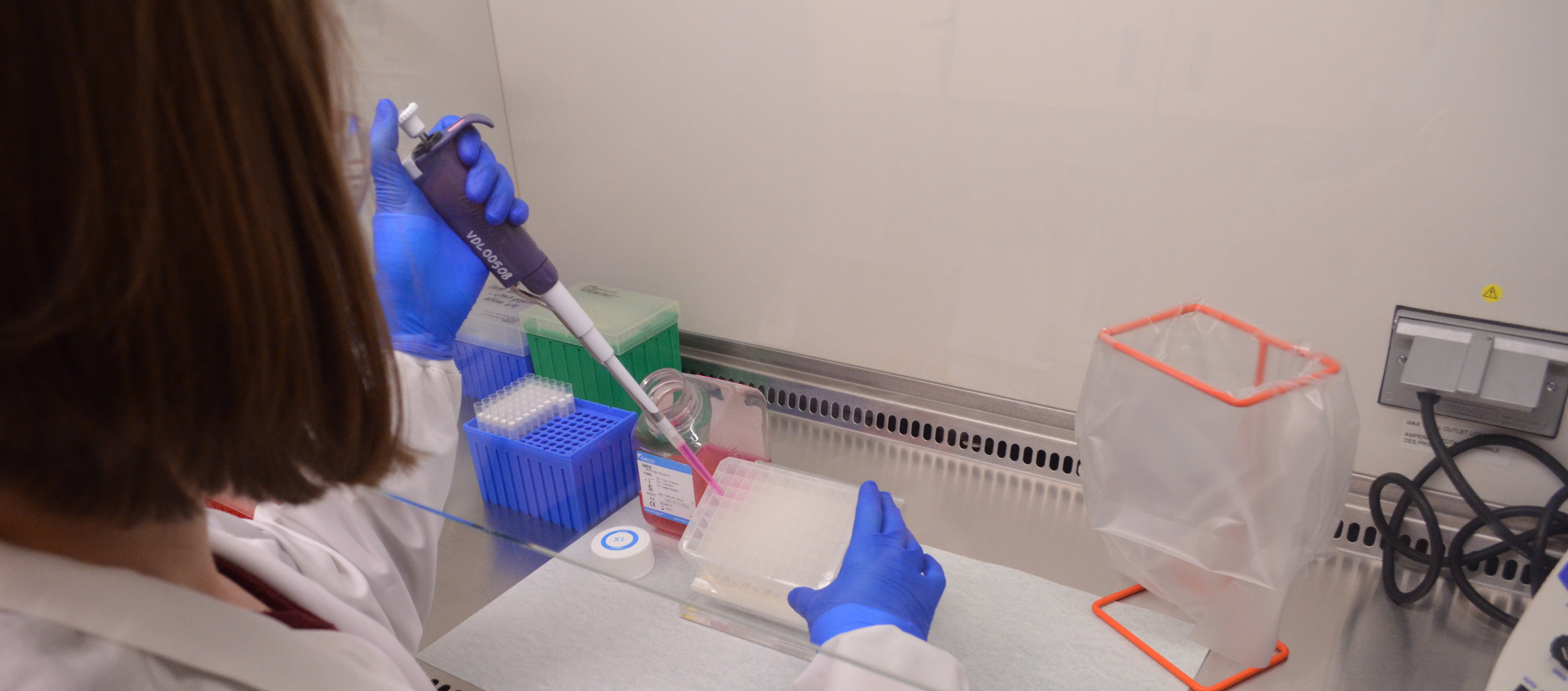 pipetting in the OVDL