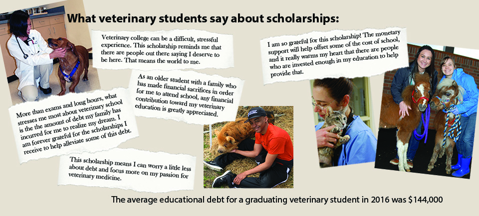 Scholarships | Carlson College of Veterinary Medicine