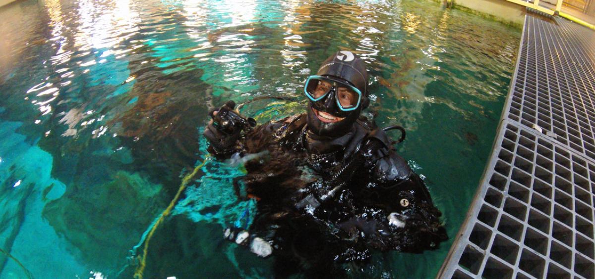 Dr. Carla Schubiger surfaces from a dive as a volunteer at the Oregon Coast Aquarium.