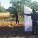 Researchers trapping mosquitoes in Kruger National Park in South Africa